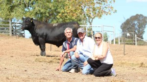 Top price bull Irelands Locksley L110 purchased by Henk and Helma Van Den Heuvel, Greendale Hills Estate, Greendale, with Irelands Angus principal Corey Ireland