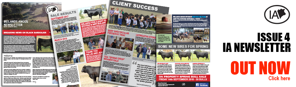 Issue 4 | Irelands Spring Newsletter